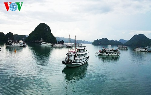 Hanoi-Ha Long Bay trip recommended as affordable luxury - ảnh 1