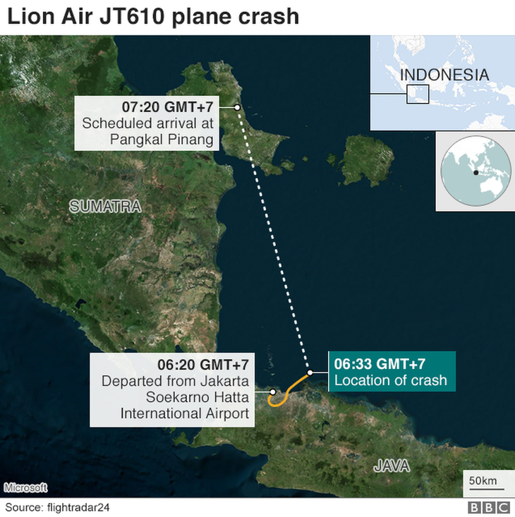 Lion Air plane had airspeed problem on flight prior to crash, says investigator - ảnh 1