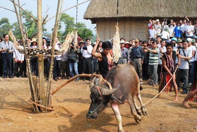 ชนเผ่าเบราในเขตที่ราบสูงเตยเงวียน - ảnh 3