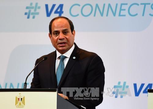 Presiden Mesir menandatangani dekrit membentuk Komisi Pemilihan Nasional - ảnh 1