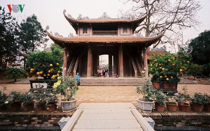 วัดโนม แหล่งอนุรักษ์นิมิตหมายแห่งวัฒนธรรมเวียดนาม - ảnh 1