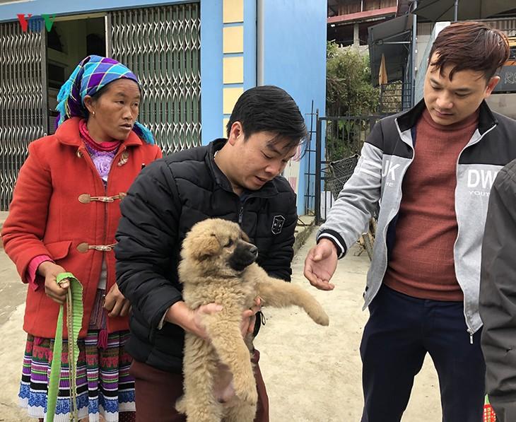 เที่ยวตลาดบั๊ก ห่า หาซื้อสุนัขพันธุ์พื้นเมืองของเผ่าม้ง - ảnh 3
