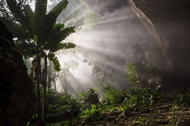 Son Doong Cave nominated for world record - ảnh 1