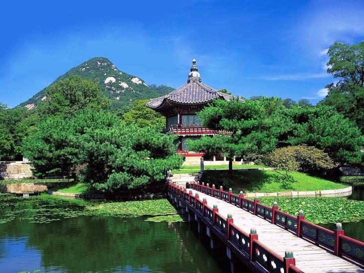 越南航空总公司推出特别优惠活动 - ảnh 1