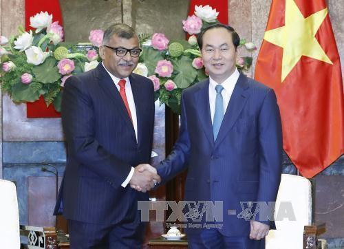 大力推动越南和新加坡在司法改革领域的合作 - ảnh 1