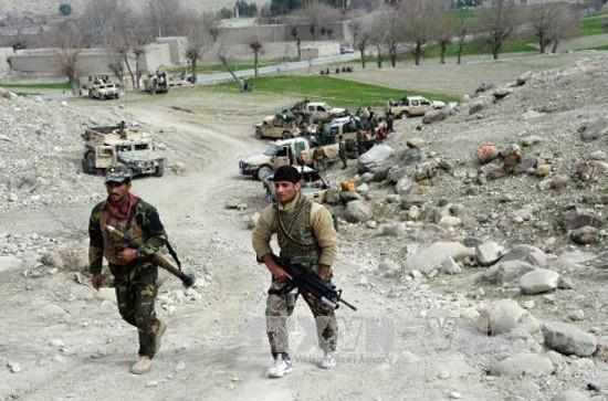 IS 在阿富汗东部打死18名士兵 - ảnh 1