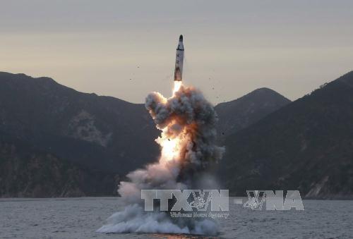 美国对朝鲜实施新制裁 - ảnh 1