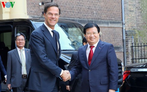 越南政府副总理王庭勇会见荷兰首相吕特 - ảnh 1
