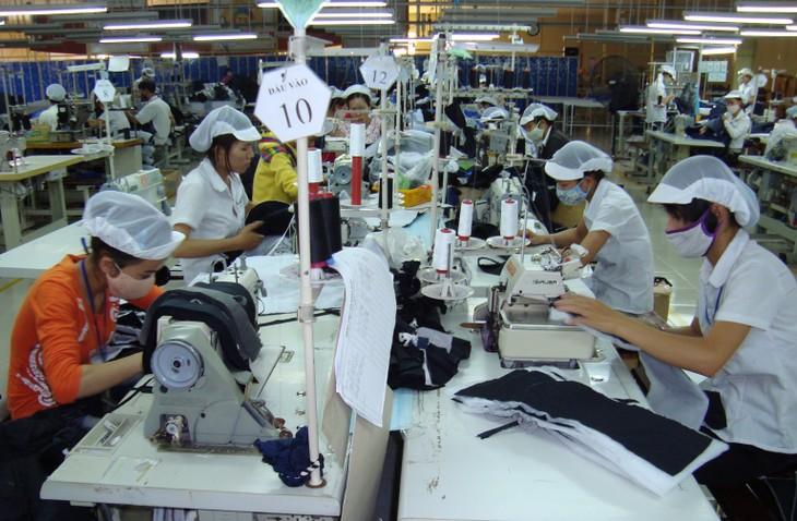 2017年亚太经合组织系列会议:提高越南中小微企业价值 - ảnh 1