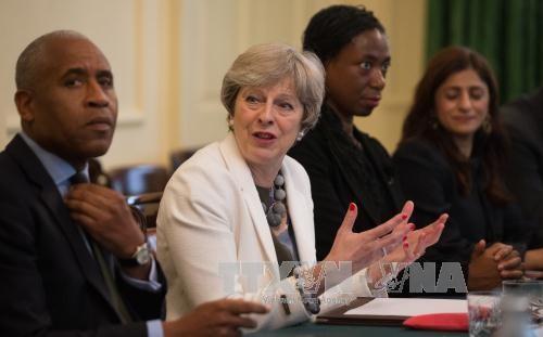 英国脱欧问题:英国内阁解决各项分歧 - ảnh 1