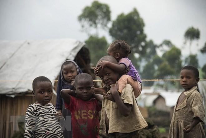 联合国警告刚果200万儿童面临饿死危机 - ảnh 1