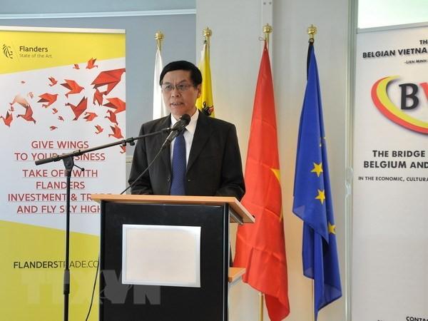 比利时企业与越南加强贸易合作 - ảnh 1