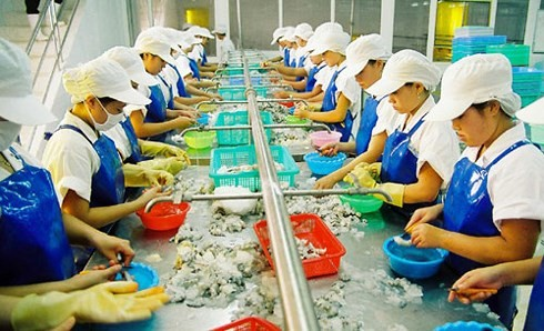 """欧盟委员会代表团就取消对越南水产的""""黄牌""""警告与越方会谈 - ảnh 1"""