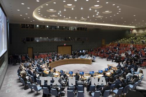 美国否决联安理会关于保护巴勒斯坦人的决议草案 - ảnh 1