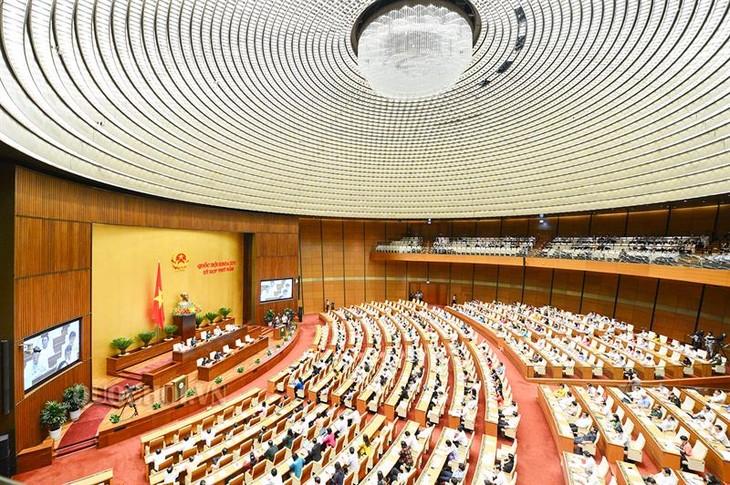 L'Assemblée nationale adopte le programme législatif de 2019 - ảnh 1