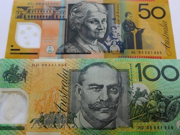 澳大利亚警告全球贸易紧张将引发危机 - ảnh 1