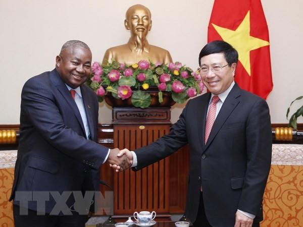 越南政府副总理兼外长范平明会见莫桑比克驻越大使佩恩 - ảnh 1