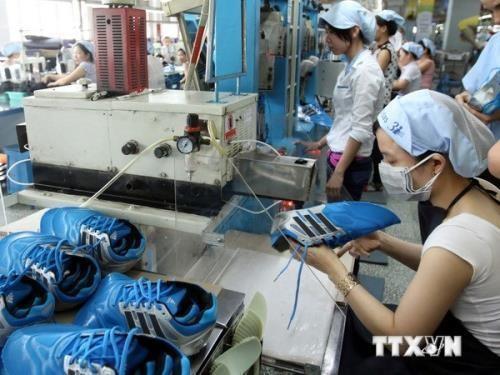 越南和捷克双边贸易额出现乐观信号 - ảnh 1