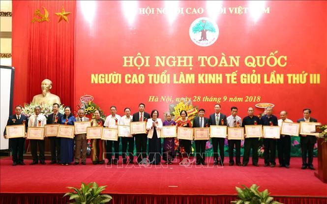 越南政府副总理武德担出席全国第3次老年人经济能手表彰会 - ảnh 1