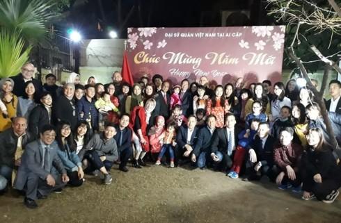 越南在世界各国举行欢度传统春节活动 - ảnh 1