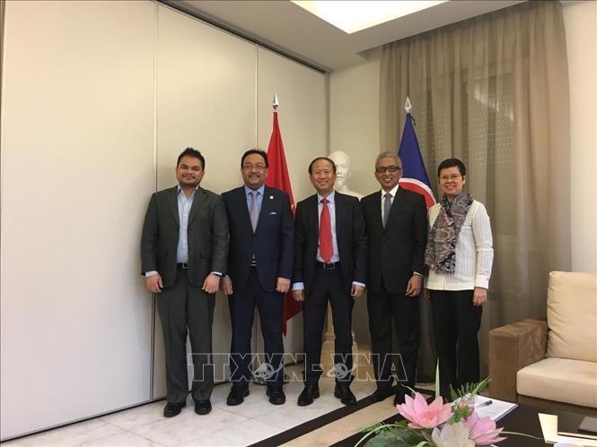 越南担任驻马德里东盟委员会轮值主席 - ảnh 1