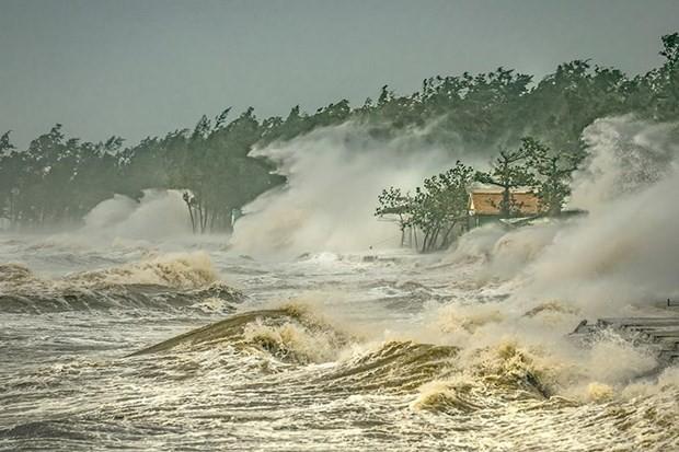 """越南作品在中国广州""""台风委员会区域天气和气候""""摄影比赛中荣获一等奖 - ảnh 1"""
