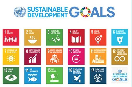 联合国促进实现2030年可持续发展目标的行动 - ảnh 1