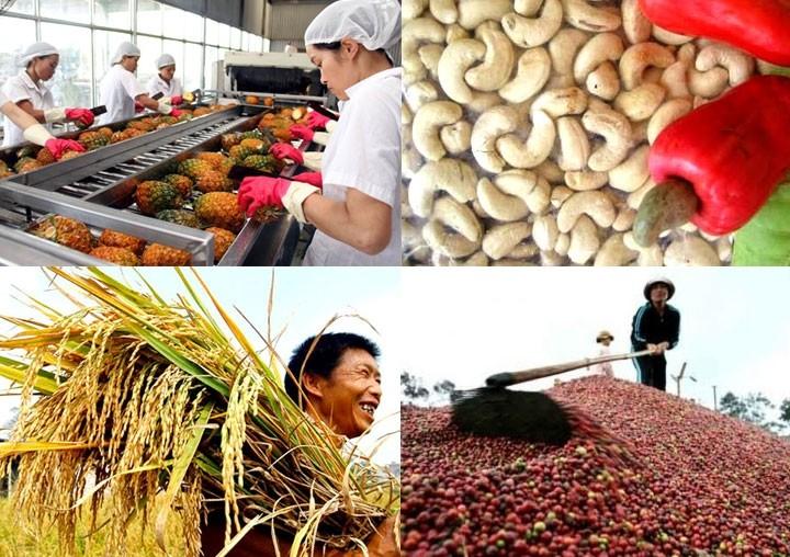 越南农业可持续发展伙伴会议举行 - ảnh 1