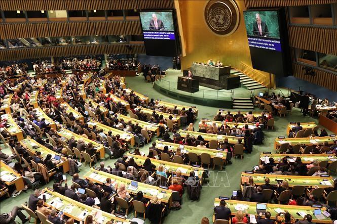 越南是国际社会负责任的成员国并坚持走和平发展道路 - ảnh 1