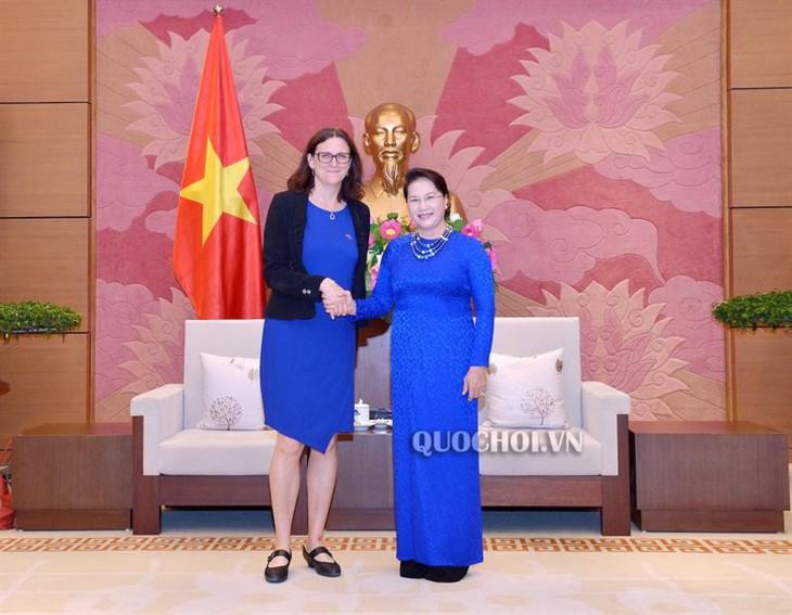 越南国会主席阮氏金银会见欧盟贸易专员塞西莉亚·马姆斯特罗姆 - ảnh 1