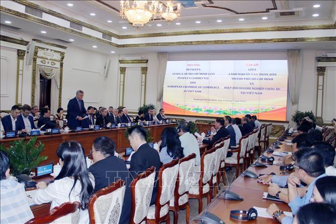 胡志明市领导人会见越南欧洲商会领导人 - ảnh 1