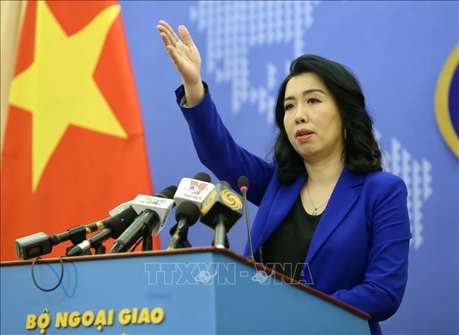 越南要求中国停止在越南海域实施的各种侵犯行为 - ảnh 1