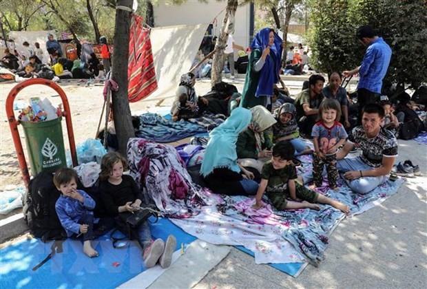 越南代表东盟对武装冲突中的儿童状况表示担忧 - ảnh 1