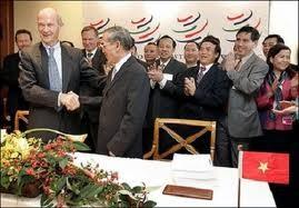 Erfolge und Herausforderungen Vietnams fünf Jahre nach dem WTO-Beitritt - ảnh 1