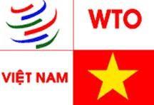 WTO-Beitritt: Das veränderte Kaufverhalten der vietnamesischen Verbraucher - ảnh 1