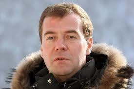 Russlands Präsident  Medwedew plädiert für eine Umgestaltung der EAWG - ảnh 1