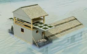 Das Hausmodell gegen den Klimawandel - ảnh 1