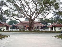 Nghe An: Aufbau des Tempels für Angehörige des Präsidenten Ho Chi Minh - ảnh 1