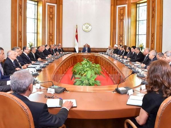 Ägypten erlaubt ausländische Botschafter zur Wahlbeobachtung - ảnh 1