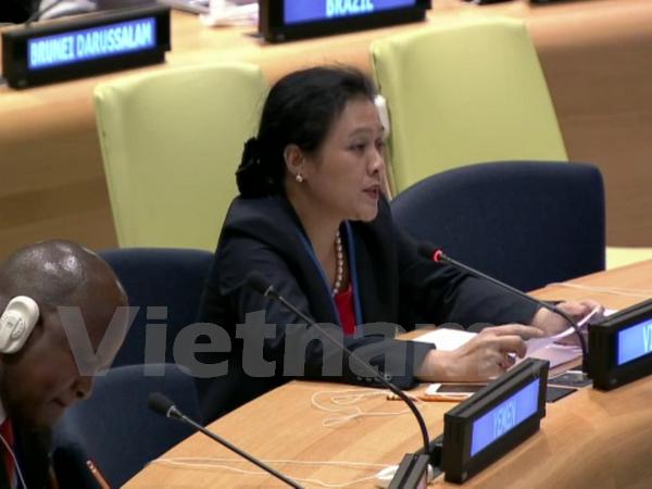 Vietnam verpflichtet sich, mit den UN-Organisationen bei Umsetzung der Gesetze zusammenzuarbeiten - ảnh 1