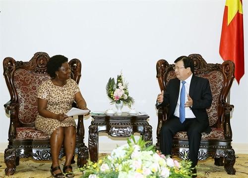 Vizepremierminister Trinh Dinh Dung empfängt Vizevorsitzende der Weltbank - ảnh 1