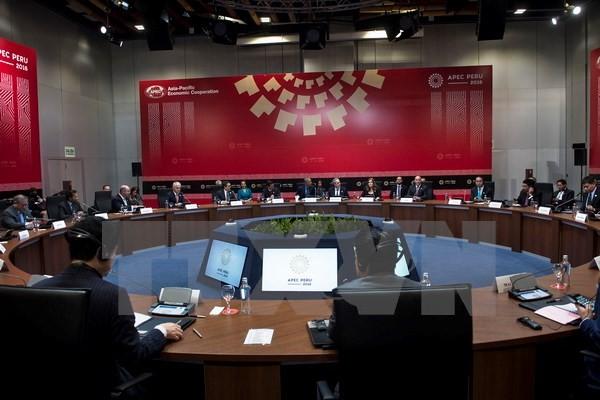 Spitzenpolitiker der TPP-Länder verpflichten sich, den Vertrag umzusetzen - ảnh 1