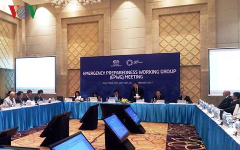 Sitzungen innerhalb der Konferenz der hochrangigen APEC-Beamten - ảnh 1