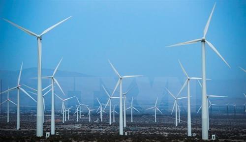 Förderung der Grün-Wirtschaft im Kontext des Klimawandel - ảnh 1