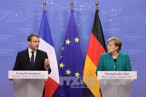 Frankreich und Deutschland fordern Parteien in Ukraine zur Umsetzung der Minsker-Vereinbarung auf - ảnh 1