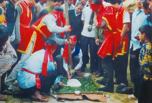 Das Day-Kuchen Festival in Truc Phe - ảnh 1