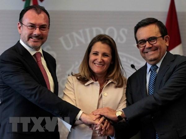 USA, Mexiko und Kanada setzen NAFTA-Verhandlungen fort - ảnh 1