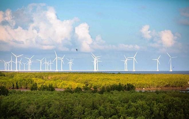 Erneuerbare Energiewoche in diesem Monat - ảnh 1
