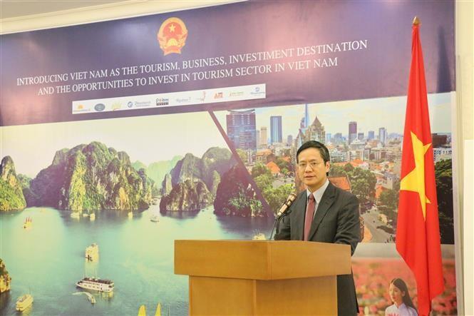 Botschafter Pham Vinh Quang: Vietnam legt großen Wert auf Mechanismen der multilateralen Globalisierung - ảnh 1