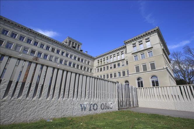 Krise der Golfstaaten: VAE beschwert sich bei WTO über Katar - ảnh 1